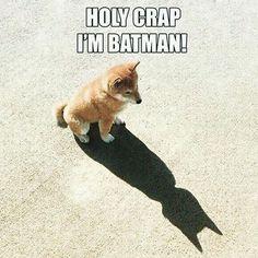 Batman, ich schmeiß mich weg