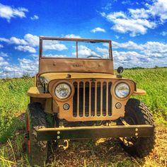 Great CJ-2A. Photo by Brian H.                                                                                                                                                      Mais