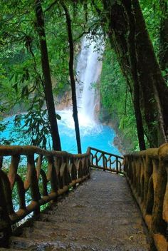 Rio Celeste Waterfall,  Costa Rica.  I would love to see Costa Rica.  It has so many different geographies that you would never run out of things to do on a honeymoon.