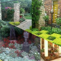 """See 31 photos and 15 tips from 4 visitors to Designer Gardens Landscaping. """"Anything you want in your garden they can do Landscaping, swimming pools,. Koi, Garden Landscaping, Swimming Pools, Garden Design, Outdoor Structures, Landscape, Gardens, Front Yard Landscaping"""