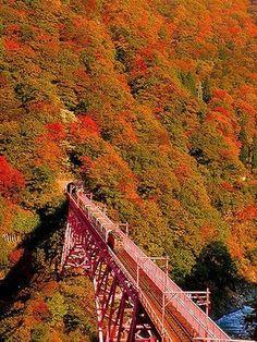 黒部峡谷鉄道のトロッコ電車で巡る秘湯 [黒部・立山の観光・旅行] All About Toyama, Mountain Climbing, Japan, Locomotive, The Good Place, Vineyard, Places To Go, Scenery, Landscape