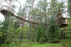 Swiss tree-house