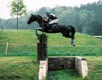 did you know horses lose sight of the jump from over 12ft away? how they can calculate stuff like this amazes me