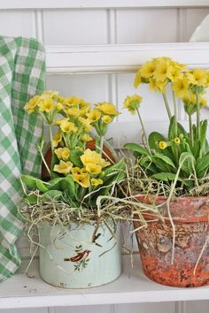 You can& use up CREATIVITY. Love Flowers, Spring Flowers, Galvanized Tray, Narcisse, Vibeke Design, Thistlewood Farms, Deco Floral, Mellow Yellow, Garden Pots