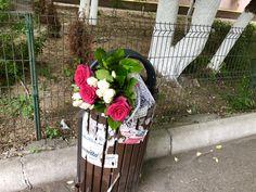 Cineva a aruncat o poveste, încă proaspătă, la gunoi / Someone has thrown  away a story, still fresh, into the bin 😳
