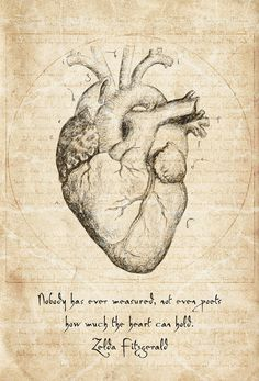 Anatomy Sketches, Anatomy Drawing, Anatomy Art, Drawing Sketches, Drawing Ideas, Zelda Fitzgerald, Scott Fitzgerald, Medical Drawings, Image Deco