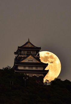 Super Moon Rise Behind Gifu Gifu Temple Castle Japan Beautiful Moon, Beautiful World, Beautiful Places, Beautiful Pictures, Stars Night, Stars And Moon, Japanese Castle, Japanese Art, Japanese Temple
