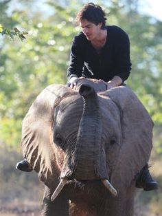 ian on an elephant.  your argument is invalid.