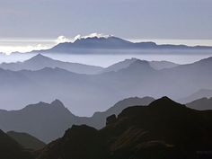 east slope of the Andes, Ecuador