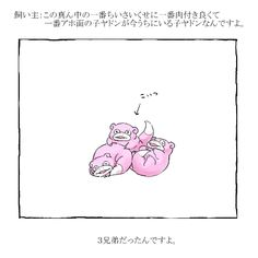 Pokemon, Catch Em All, Movie, Manga, Game, Comics, Wallpaper, Illustration, Character