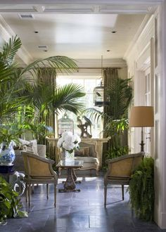 Love the palms - plantation style