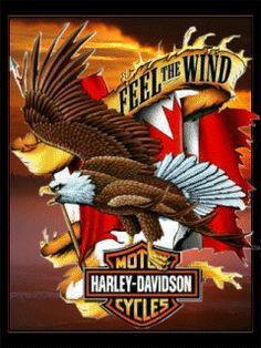 Harley Davidson Wallpapers and Screensavers | Free Herley Davidson Motors Screensaver for Mobile and Cell Phone