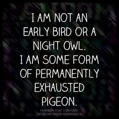 I am not an early bird or a night owl. I am some form of permanently exhausted pigeon.  INFJ, and INFP-T