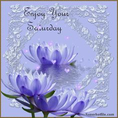Have a Beautiful Saturday | You Have A Beautiful Wife Bryan .. You And Kathy Have A Great Weekend