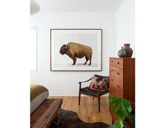Here it is!!! So awesome. I love this American Buffalo - The Animal Print Shop by Sharon Montrose