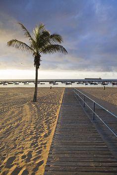 La arena, el mar, las barcas, los Kioskos, todo hacen de ella un lugar ideal ... Playa de las Teresitas, Santa Cruz de Tenerife,