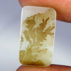Natural Dendrite Quartz Rare Designer Defined Gemstone Cushion Cabochon 04.40Cts #Qualitygems2014