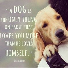 True love :) I love my dogs so much! I couldn't imagine my life without my dogs or any dog that is and will be in my life.