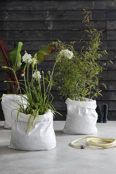 Puinzak met potgrond en plant wordt bloembak