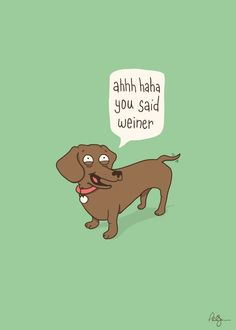 Some dachshunds are so immature.