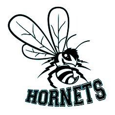 Hornets team temporary tattoos #sports #temporarytattoos
