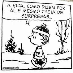 Surpresas