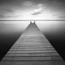 black and white nature photography - Google Search