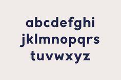 Typography / Burgess Bold Burgess Studio
