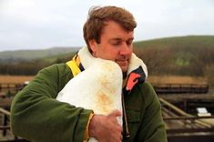 """Richard Wiese, host of the television show """"Born to Explore,"""" is hugged by a swan"""