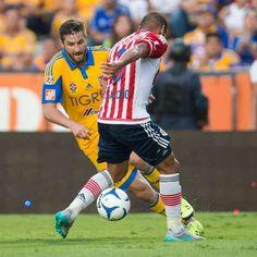 ¿Cómo ver Chivas vs Tigres EN VIVO? Liga MX, hoy 20 de septiembre