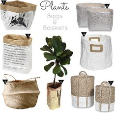 The Design Chaser: Interior Styling | Plant Storage Ideas