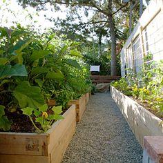 10 raised bed garden ideas | Easy starter garden | Sunset.com