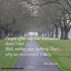 People often say that motivation doesn't last. Well, neither does bathing. That's why we recommend it daily. Smart Quotes, Zig Ziglar, Bathing, Wellness, Motivation, Sayings, People, Bath, Lyrics