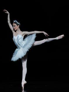 Amber Scott in Swan Lake, Australian Ballet Company. Ballet Art, Ballet Dancers, Ballerinas, Ballerine Vintage, Swan Lake Ballet, Australian Ballet, Ballet Companies, Dance Movement, Ballet Photography
