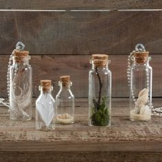 Nicole™ Crafts Mini Glass Bottle Terrariums & More