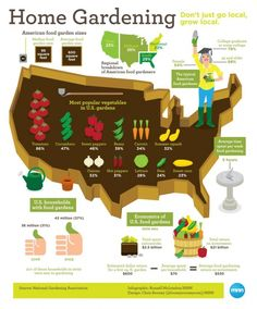 There's so much more to gardening than you would have guessed! Here are some fun and interesting facts about gardening in the US! #Infographic #Gardeing #FoodSaver