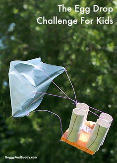 This year's egg drop challenge w/ FREE planning printable! (The Egg Drop Challenge~ Buggy and Buddy) Fun idea for when the kids get older! Science Activities For Kids, Stem Science, Science Fair, Science Lessons, Teaching Science, Stem Activities, Learning Activities, Kids Learning, Summer Science