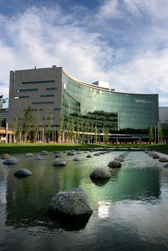 ... Plain DealerThe new boulevard near East 93rd Street, the pools and new plants are meant to help patients and loved ones visiting the Cleveland Clinic.