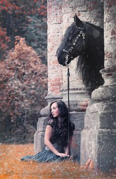 Horse photography, romantic girl and Fresian. Please also visit… All The Pretty Horses, Beautiful Horses, Animals Beautiful, Horse Photos, Horse Pictures, Horse Love, Horse Girl, Majestic Horse, Black Horses