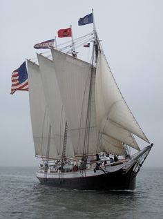 On a hot, muggy day earlier this week, I joined guests aboard the ketch Angelique, one of the members of the Maine windjammer fleet, for a cruise from Old Boats, Small Boats, Shrimp Boat, Full Sail, Beautiful Ocean, Speed Boats, Motor Boats, Tall Ships, Fishing Boats