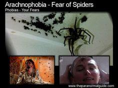 arachnophobia - Google Search