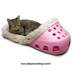 It's the Perfect Pet Bed...with Panache!