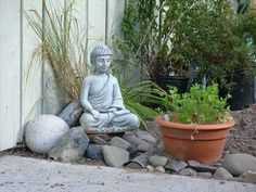 Im Loving Rachael Ray: Incorporating Buddha in Design