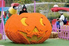 Halloween fun in Central Florida