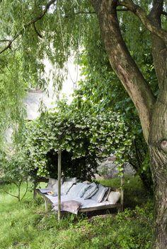 backyard reading place