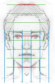 facial proportions - Notice a few quick things about these proportions: eye to chin = eye to the top of head human head = 5 eyes wide nose = 1 eye wide space between eyes = one eye bottom of nose lines up w/ bottom of ears eyebrows line up w/ top of ears