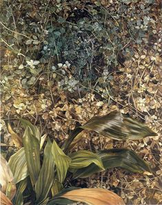 Lucian Freud Two Plants