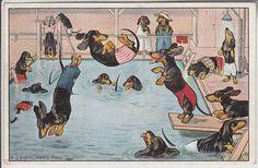 Vintage postcard with dachshund boys by P.O. Engelhard