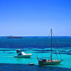 Rotto #rottnestisland #perth #latergram #ThisisWA #westernaustralia #wa #Australia #ig_australia #australiagram #australiashotz #travel #wanderlust #tourism #neverstoptravelling #intrepidtravel #beautifuldestinations #mybudgettravel #sea #beach #ocean #photooftheday #nofilter #ig_great_shots #waves #sunshine #love #paradise #instagood #tbt #liveintrepid by rach_walker12 http://ift.tt/1L5GqLp