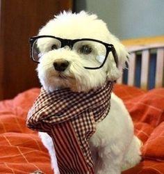 I'm smart like u daddy!